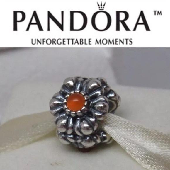 Pandora Jewelry - 790580CAR Retired Pandora July Birthday Blooms